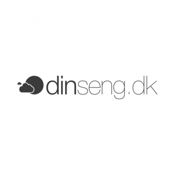 dinseng-logo